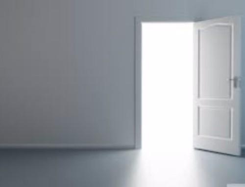 Portal of Choice